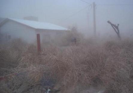 Intensa actividad de bomberos de Villalonga