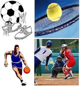 Gestiones para adquirir programas deportivos para Patagones