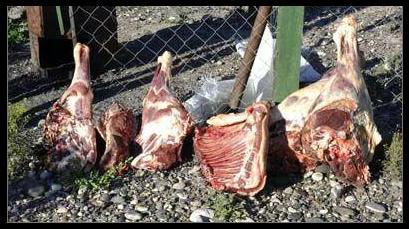 Decomisaron cuatro toneladas de carne con hueso